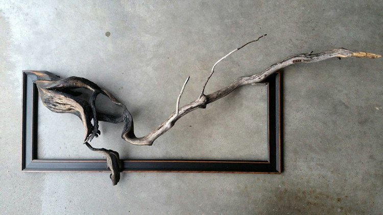 Darryl Cox tree branch frame art15